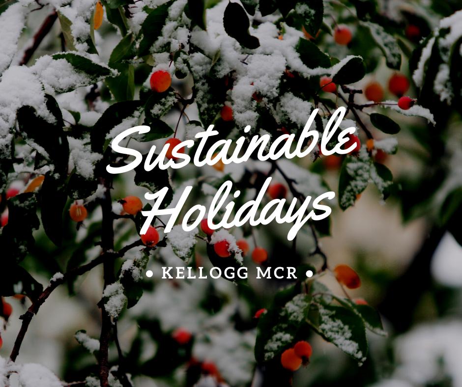 Sustainable Holidays